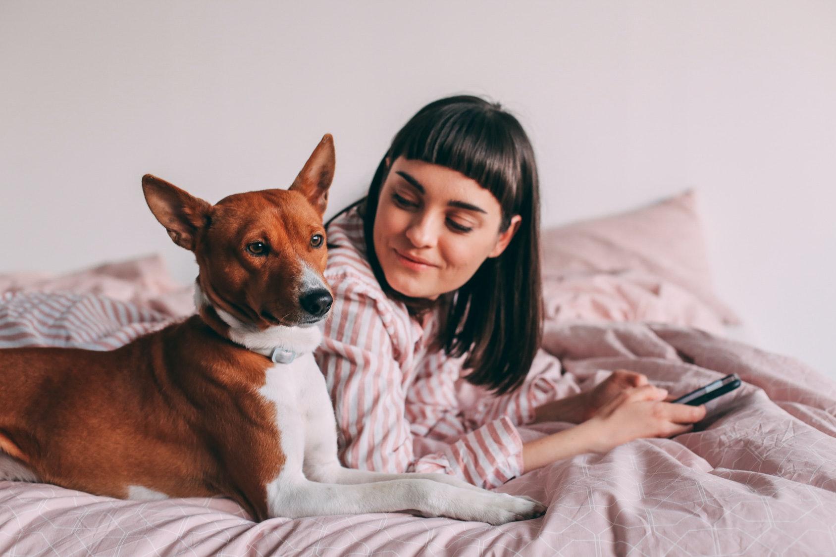 Wie ein Haustier Ihr Leben drastisch verändern kann