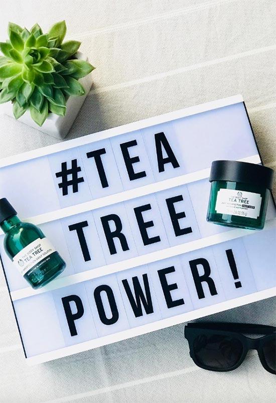 Vorteile von Teebaumöl für die Hautpflege