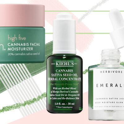 Cannabis Sativa Seed Oil/ Hemp Seed Oil for Skin - Benefits & Uses